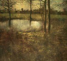 The Secret Pool by Sarah Jarrett