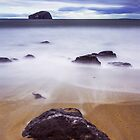 Bass Rock at Seacliff Beach  by PhilipCormack