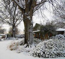 Winter Wonderland by WildestArt