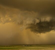 Mesocyclone, Pampa, Texas. by John Finney