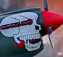 "Curtiss P-40 Kittyhawk -  ""Lulu Belle"" - Shoreham 2013 by Colin J Williams Photography"