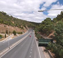 Looking down Freeway to City & Suburbs, Adelaide Hills. S.A. by Rita Blom
