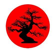 bonsai red sun  by foggraven