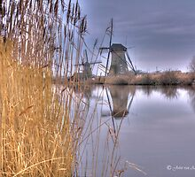Going Dutch by John44