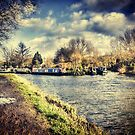 River Stort at Sawbridgeworth by Nigel Bangert