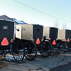 5 Amish Carriages by Theodore Kemp