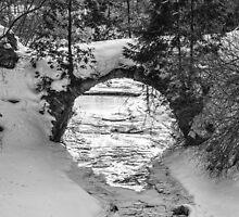 Winterest by jules572