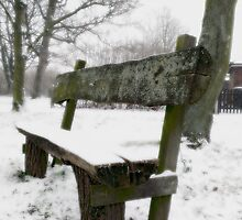 Snow Theme - Bench by Vanessa  Hayat