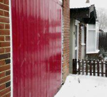 Red Door by Vanessa  Warren