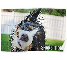 Shake it off. Poster