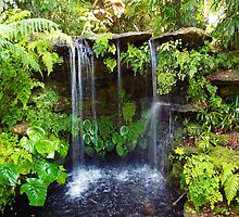 Waterfall Paradise Fairchild Botanical Gardens, Miami, FL by artkrannie