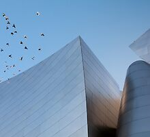 Walt Disney Concert Hall - Los Angeles California by Ram Vasudev