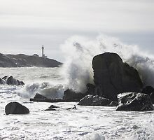 You are not home until you can hear the wave by Shawn Bourque