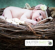 Artwork photography for your home by shuttersweet