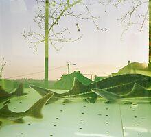 Fish Town by krolikowskiart