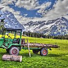 Swiss Horsepower by vivsworld