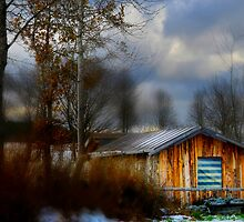 Old, nice Hut by Angelika  Vogel