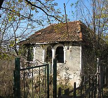 A Tiny Old Cottage in Romania by Dennis Melling