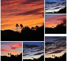 COLLAGE OF EARLY MORNING SUNRISES by JAYMILO