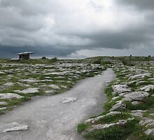 The Dolmen In The Burren by Menega  Sabidussi