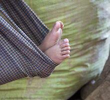 feet by Anne Scantlebury