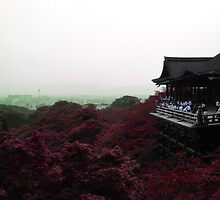 From a distance (Kyoto) by JulieMaxwell