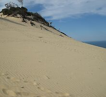 More sand hills at Rainbow Beach by toryroetwo