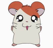Hamtaro shirt by PidoPido