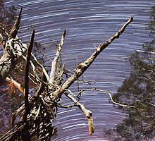 Startrails by Russell Knoblock
