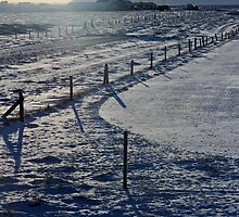 Snow Farm by James Hanley
