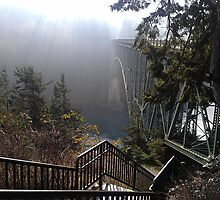 Stairway to Deception Pass, Whidbey Island, WA by lpmag75