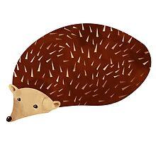 Hedgehog by randoms