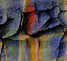 Colored Earth Abstract by CarolM