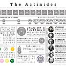 Element Infographics: The Actinides by Compound Interest