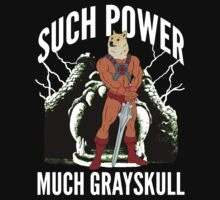 Such Power Much Grayskull by printproxy