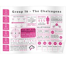 Element Infographics: The Chalcogens Poster