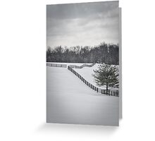 The Color of Winter BW Greeting Card