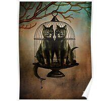 Naughty Kitties Poster