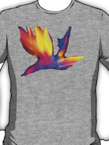 Abstract Wings Of Color T-Shirt