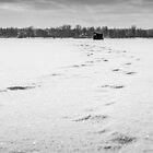 Frozen river / Rivière gelée by maophoto