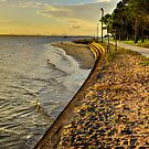 Bribie Island Shorline by Terry Everson