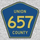 Union 657 County, New Jersey by cadellin
