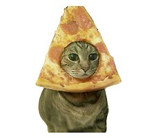 Pizza Cat by xox-