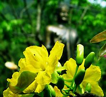 Flower and Budda by sadspring2001