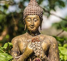 Buddha in nature by urbankarma