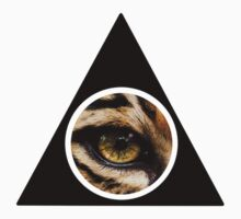 Triangle Leopard-Eye Design by Andrew Mossop