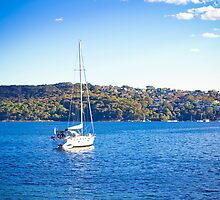 australian sunshine sailing by faithie