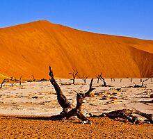 Dead Vlei (Deadvlei) Sossusvlei Namibia Africa lanscape by wasootch