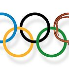 The Sochi 2014 Winter Olympics by Alex Preiss