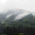 Misty Mountains by Kallian